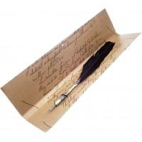 Pluma ave escritura antigua Rubinato negra